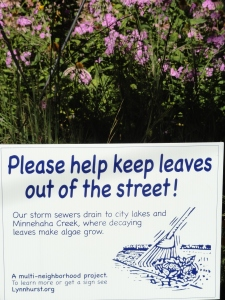 Leaves pollute our waterways!