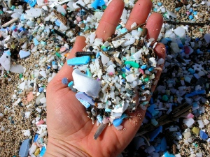Plastic from our waters