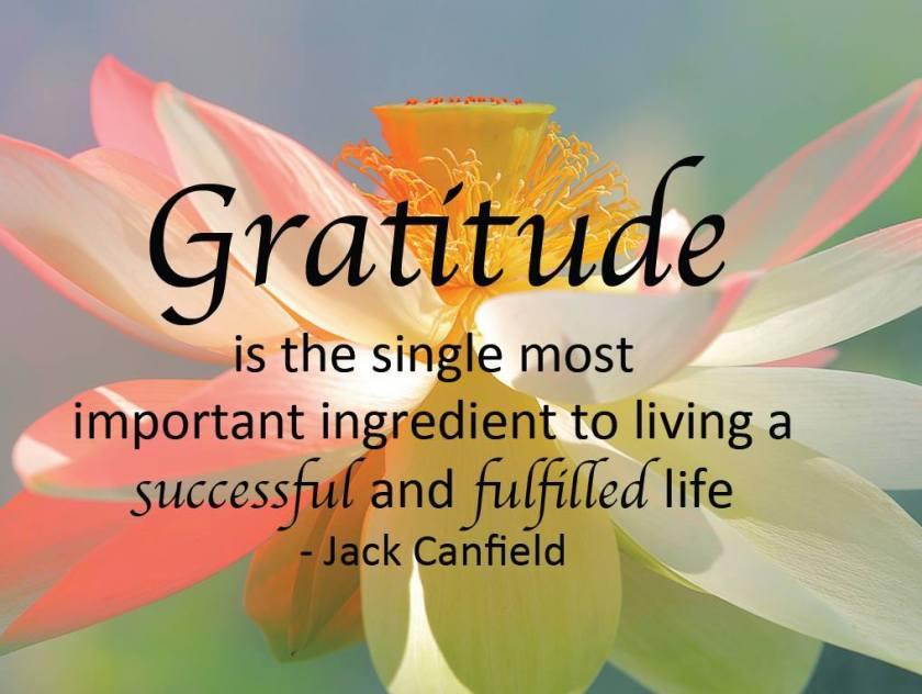 gratitude makes you happy