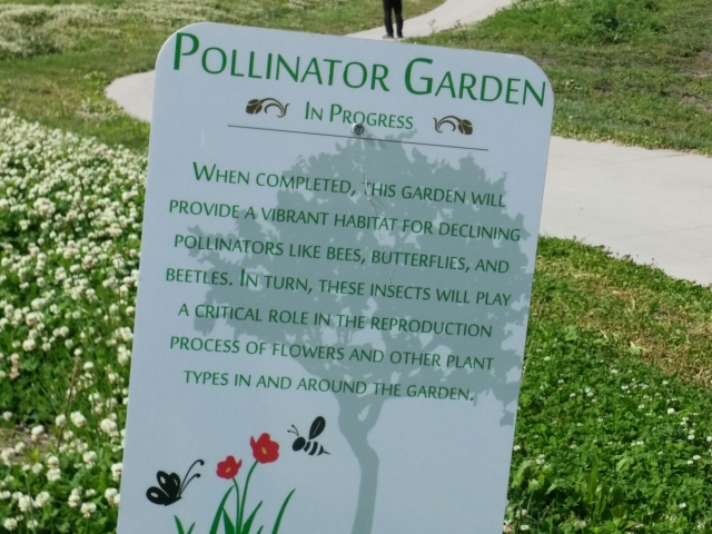 Just a few changes can make a big difference for pollinators.(bees, butterflies, and birds)